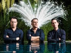 the peacocks Bandfoto